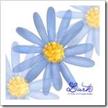 ブルーデージー 提出課題 花の描き方